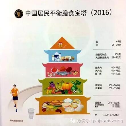 从2016中国膳食宝塔看畜禽无抗养殖所需的全方位营养